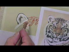 Learn how to draw and paint using Pastel Pencils & Mixed Media. Create stunning animal, landscape and portrait pictures. Tune in for free art tips via our po. Crayons Pastel, Pastel Pencils, Coloured Pencils, Outline Drawings, Animal Drawings, Pencil Drawings, Drawing Animals, Drawing Lessons, Drawing Techniques