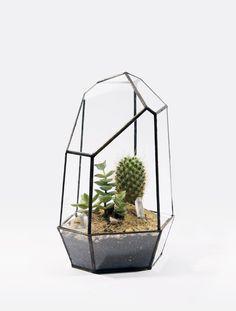 Bijzondere glazen cactuspotten - DeOndernemer.nl