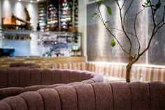 Cigalon, Chancery Lane. 3 courses & a cocktail £20 per person Available lunch & dinner Mon-Fri until 28th April 2017.