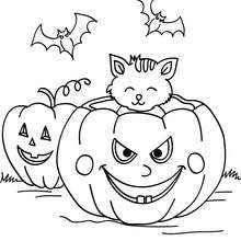 Pumpkin with bats and cats