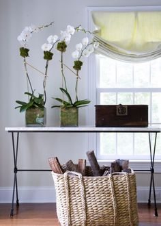 Coastal Style: Low Key Hamptons Style - Get The Look Corpus Christi, Relaxed Roman Shade, Types Of Window Treatments, Budget Blinds, Asian Interior, White Orchids, Coastal Style, Window Coverings, Roman Shades