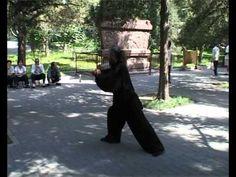 Yang Jian Hou (T'ai Chi Ch'uan) Master Zhang's demonstration for Master Jin - YouTube
