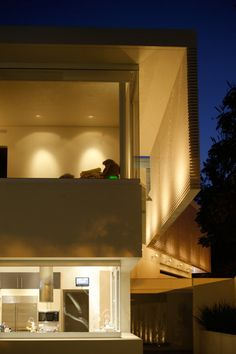 Contemporary Castlecrag house nestled in nature by studio CplusC Architectural Workshop / Sydney, Castlecrag, Australia