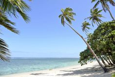 In case you need a little more convincing to start planning your vacation to Fiji, these 48 photos are guaranteed to make you book a ticket. Plantation Island, Family Friendly Holidays, Islands In The Pacific, Practical Parenting, Fiji Islands, Airline Tickets, Treasure Island, Cheap Flights, Archipelago