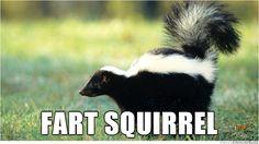 Fart squirrel