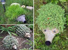 Ежик-клумбы с иголками из растений