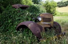 http://jessicacrawford.files.wordpress.com/2009/07/abandoned-car-crop.jpg