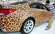 Leopard Car! Steeez | Raddest Looks On The Internet http://www.raddestlooks.net