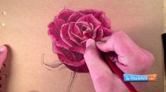 video tutorial: How to Draw a Rose with Colored Pencils