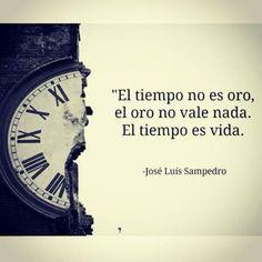 Frase del famosos Saramago