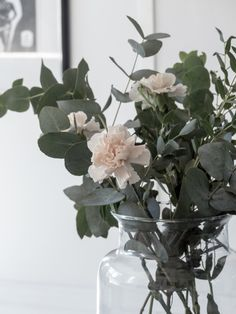 Eucalyptus, flowers - All For Herbs And Plants Home Flower Decor, Flower Decorations, Faux Flowers, Beautiful Flowers, Flower Power, Bouquet, Plant Decor, House Plants, Planting Flowers