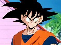 Dragon Ball Z Son Goku