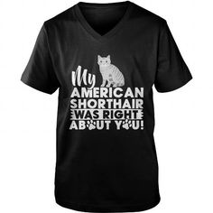 My American Shorthair Was Right About You Kitty Cat Shirts Kitten TShirts  Homeless Rescue TShirt
