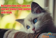 Turn to Allah the Comforter! ☝️