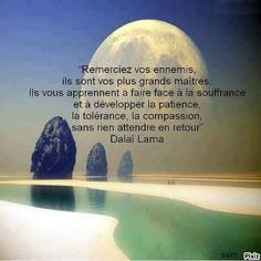 Hero Quotes, Life Quotes, Citation Dalai Lama, La Compassion, Motivational Quotes, Inspirational Quotes, French Quotes, My Mood, Positive Life