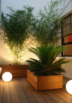 Japangarden Design