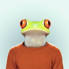 morphkid - frogger.