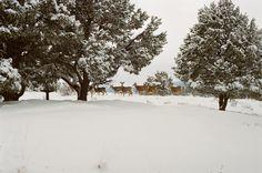 📌 New free photo at Avopix.com - Snow Ice Winter    ✅ https://avopix.com/photo/14911-snow-ice-winter    #snow #ice #winter #cold #weather #avopix #free #photos #public #domain