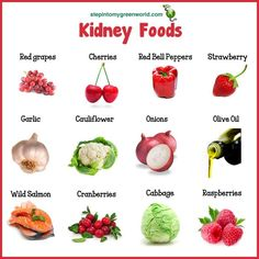 """food for the kidney - Google zoeken STOP: Don't even think about leaving … till you read this letter """"How To Lower Creatinine Levels, Improve Kidney Function, and Safeguard Your Kidneys From Further Damage – Introducing An All Natural Step-by-Step Program, Proven To Start Healing Your Kidneys Today!"""""""