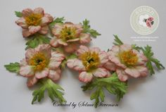 Selma's Stamping Corner and Floral Designs: Susan's Garden Anemone with Tutorial