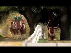 A collection of wonderful Budweiser Clydesdale commercials.  This is kinda long, but worth every minute of your time.
