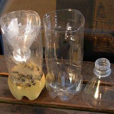 vepsefanger av plastflaske som er hjemmelaget