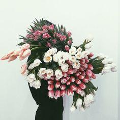 Plant your own garden ! #garden #flowers #roses www.vainpursuits.com