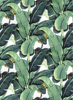 Beverly Hills Hotel Martinique Wallpaper/The Original / Palm Leaf Wallpaper/Banana Leaf Wallpaper by FabricAlley7 on Etsy https://www.etsy.com/listing/461107796/beverly-hills-hotel-martinique
