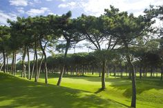 Golf Platja de Pals: The Origins of the Golf course. The course is located on the farmland of Arenals de Mar, on dunes covered by an immense pine forest planted seventy years ago. In fact, it was the first in the entire Costa Brava and it has been active since 1966.