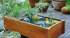 Így készül egy mini vízkert