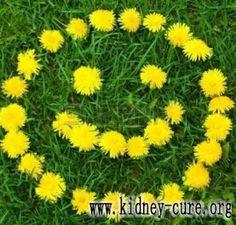 Общие средства и лечение от гипертоничекой нефропатии http://kidney-cure.org/hypertensive-nephropathy-treatment/1001.html Гипертоническая нефропатия уже является одной из важных причинах ХПН (хроническая почечная недостаточность). И поэтому для того, чтобы предотвратить тяжелые осложнения и симптомы, надо принять своевременное лечение. Для дополнительной информации прочитайте дальше.