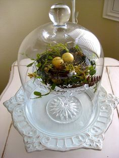 An Easter terrarium! It can be used just as a decoration or as a centerpiece, and you can make a terrarium in various styles and shades. Glass Domes, Glass Jars, Cloche Decor, The Bell Jar, Bell Jars, Deco Luminaire, Seasonal Decor, Holiday Decor, Vibeke Design