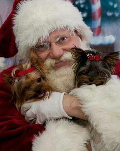 Coco and Fiona snuggle up to Santa