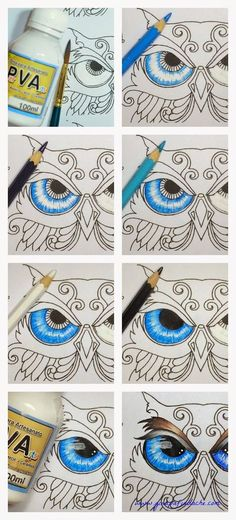 Atelier Gina Pafiadache: Floresta Encantada - Enchanted Forest - Olho da Coruja