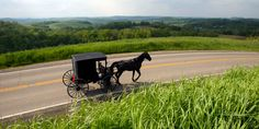 If you're looking to get off the grid for awhile, head to Holmes County, Ohio, home to one of the country's largest Amish communities.