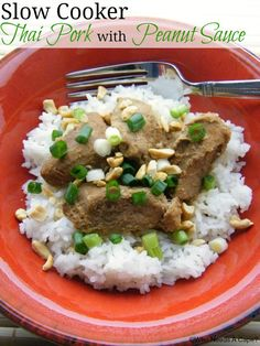 Slow Cooker Thai Pork with Peanut Sauce - I'd use chicken instead,  but this looks worth trying!