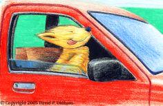 Illustration of a happy and cool dog Best Dogs, David, Cool Stuff, Illustration, Happy, Ser Feliz, Illustrations, Being Happy