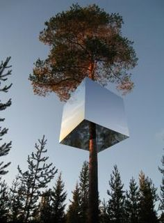 Tree Hotel  (Harads, Sweden) #extraordinary #architecture