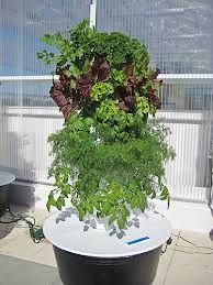 You don't need any gardening experience to use Tower Garden®. Its compact, state-of-the-art vertical aeroponic system fits easily on patios, rooftops, terraces, and—most of all—into a healthy diet.