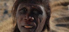 Homo Ergaster restoration by Kennis & Kennis Reconstructions - http://www.kenniskennis.com/