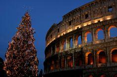 Colosseo in versione natalizia.