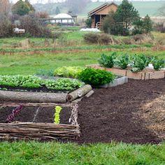 El cultivo en cama elevada es muy recomendable cuando nuestro jardín tiene problemas de exceso de humedad o también es una forma muy efectiva para cultivar sin tener que trabajar la tierra.