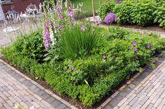 Plants, Fresh Green, Garden Planning, Landscaping, Plant, Planting, Planets