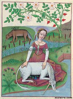 "Rare Books folio 163r. Folio 163r has a mnemonic purpose. It shows ""Castoreum"", ""Bedegar"" and, alth..."