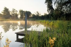 Pond dock the pond project pinterest pond ideas the for Design of farm pond pdf