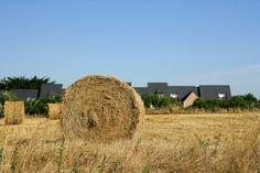 © Valérie Guilhem - Phovoir / Paysage agricole #Bretagne #Champs #Moisson