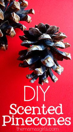 DIY Scented Pinecones - This was very useful info, especially about the oil !!! now it makes it easy to get the candle making scented oil, it's not so expensive !!! - Decorating With Pinecones
