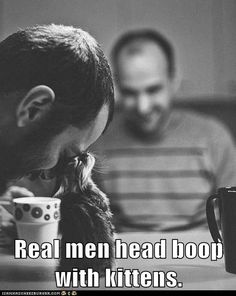 Real men head boop with kitties and puppies and children and me! I love our family's version of the Eskimo kiss!