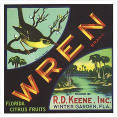 Wren Florida Citrus Orange Crate Label