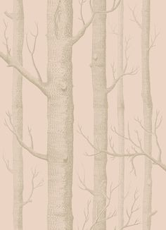Woods Pink and Gilver wallpaper by Cole & Son